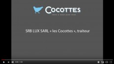 Video Cocottes